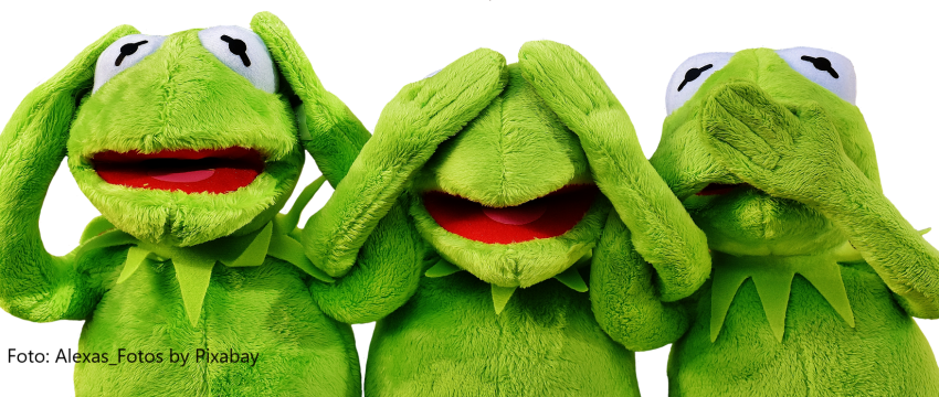 Afbeelding van Alexas_Fotos via Pixabay Kermit TEKST